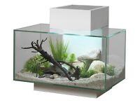 Edge fish tank