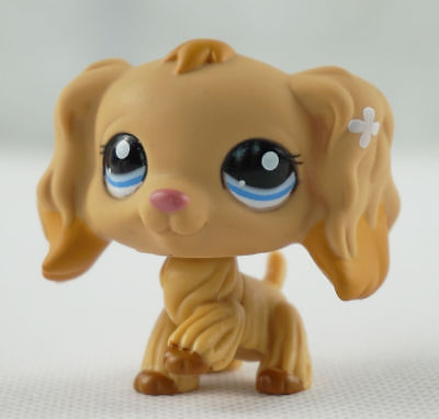 Tan Cocker Spaniel Dog Blue Eyes Littlest Pet Shop LPS 1716 Caramel Tip Ears USA