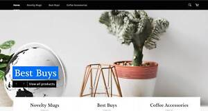 Online Business Store For Sale