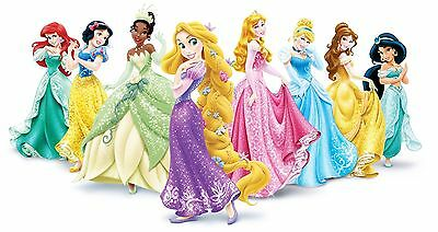 "Disney Princess Iron On Transfer 4.25"" x 7.5"" only for LIGHT Colored Fabric"
