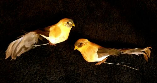 Pair Of Woodland Mushroom Bird Pick / Ornaments With Real Feathers