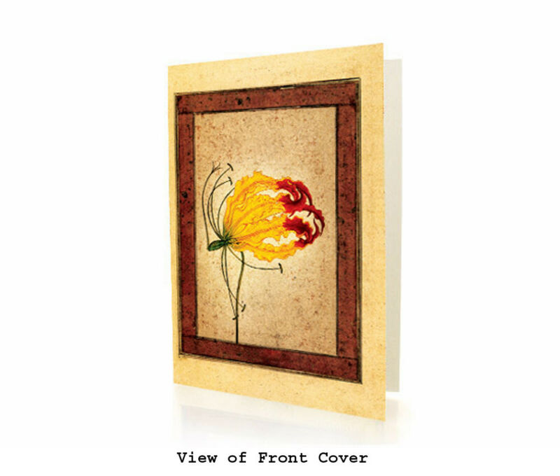 A Flame Lily - BOX OF 10 EID MUBARAK GREETING CARDS - Eid Gift