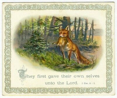 Bible Verse FOX with RABBIT Victorian Card 1880's Thomas Taylor Poem on Back