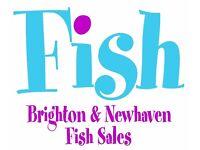 Fish Market Production Operative (Evening)