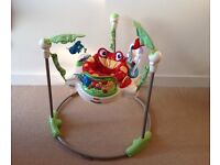 Fisher-Price Rainforest Jumperoo Baby Bouncer RRP £119.99