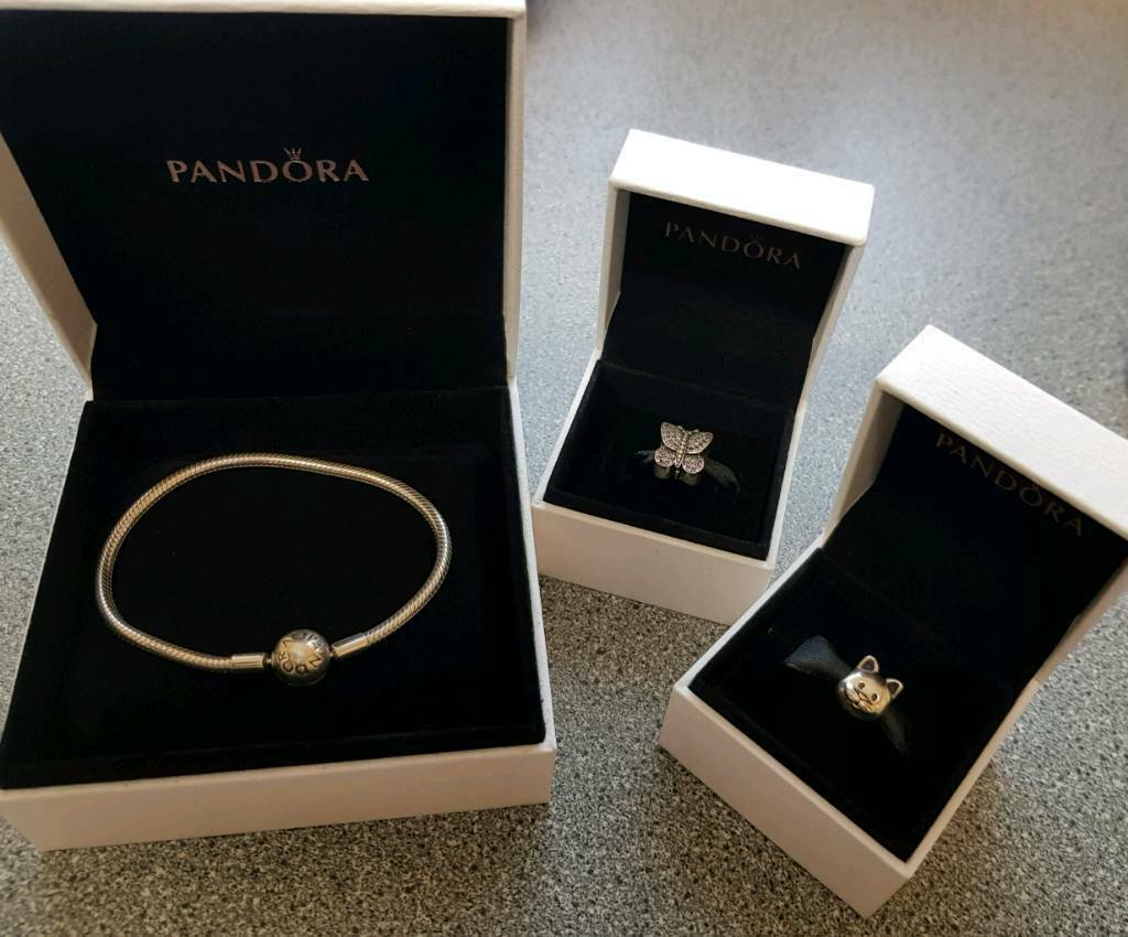 Pandora Bracelet Cat Charm And Butterfly Charm In Aboyne