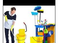 Cleaner Lady, Deep Cleaning