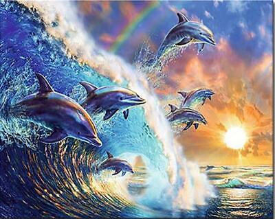 Flying Dolphins with Sunrise - Van-Go Paint-By-Number Kit Dolphins Paint By Number