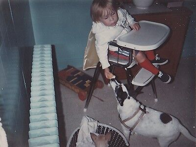 Old Vintage Photograph Baby in High Chair Feeding Puppy Dog Her Food