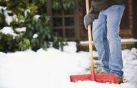 Residential Snow shoveling(Driveways, Small business)