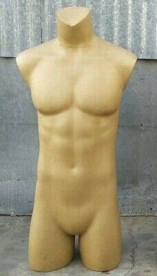 Used Mn-ka 1 Pc Male 34 Upper Torso Headless Mannequin Local Pickup Los Angeles