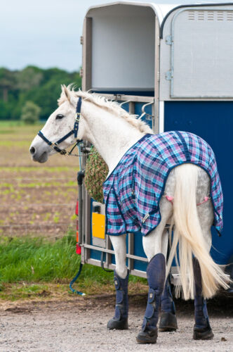 How to Maintain a Horse Trailer