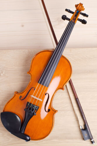 Stentor Violin Buying Guide