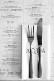 kitchen porter | aqua | welshback