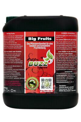 Green Buzz Liquids Big Fruits 5L - Flower Bloo Stimulation Root Booster