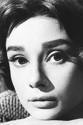 AUDREY HEPBURN CLOSE UP PORTRAIT 24X36 B&W POSTER - Audrey Hepburn Close Up
