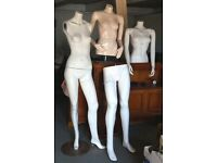 Mixed Shop Display Mannequins, Full Body And Torsos Model