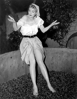 "Lucille Ball ""I Love Lucy"" 5x7 Television Memorabilia FREE US SHIPPING"