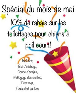Ö'Spot toilettage et boutique