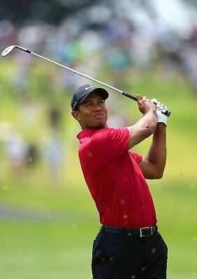 {24 inches X 36 inches} Tiger Woods Poster #26 - Free Shipping!