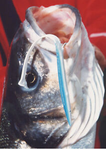 BASS-LURES-No1-THE-TOP-FOR-BASS-CATCH-BIG-SINCE-1973-THE-BEST-FISHING-LURES