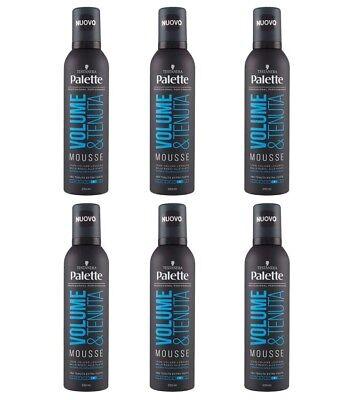 6 Stück Black-headed Farbpalette Volumen und Nachlass Mousse für Haar 250 ml