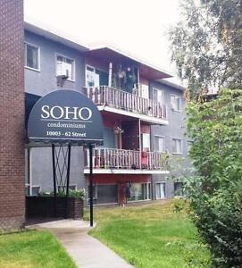 Bachelor Suite -  - Soho Manor - Apartment for Rent Edmonton