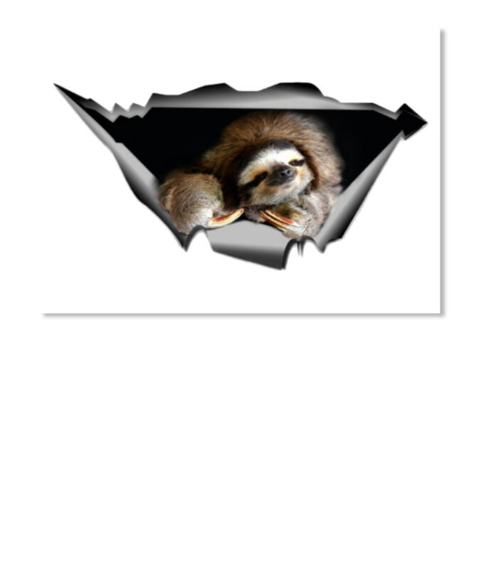 Sloth Car Sticker - Landscape