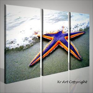 Quadro moderno starfish mare sabbia arredo stampe su tela for Stampe d arredo