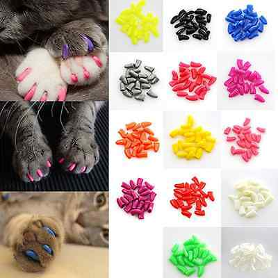 20Pcs Cat Nail Caps Clips Paw Guard Adhesive Nails Anti-Scratchy Pet Grooming