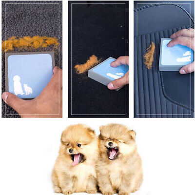 Pet Puppy Cleaning Brush Sponge Stain Eraser Fur  Hair Remover Tool Cat Dog