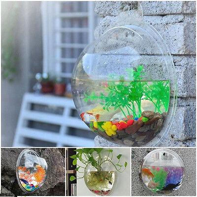 New 1X Wall Mount Hanging Fish Plant Bubble Aquarium Bowl Pot Tank Decoration PS