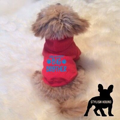 Only child now big brother dog hoodie pet clothing announcement top UK SELLER