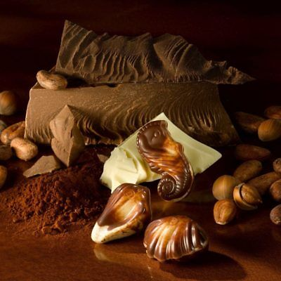 Guylian Sea Shells & Sea Horses Belgian chocolate (dark,praline,milk truffle) ()