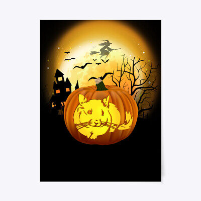 Chinchilla Halloween Costumes (Pumpkin Chinchilla Halloween Costume Gift Poster -)