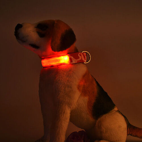 3 Modes Fancy Pets Dog LED Lights Waterproof Flash Safety Collar Without Battery