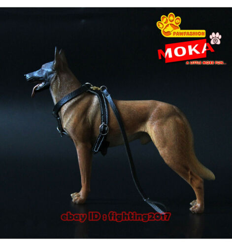 Belgian Malinois Statue 1/6 Standing Dog Model Resin GK Accessories PAWFASHION