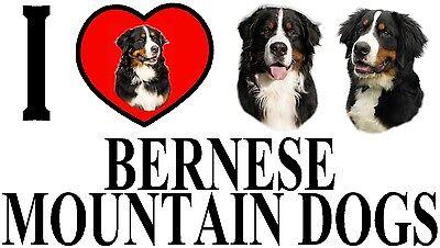 I LOVE BERNESE MOUNTAIN DOGS Car Sticker By Starprint