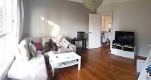 1 Room in Ivanhoe $150 Ivanhoe Banyule Area Preview