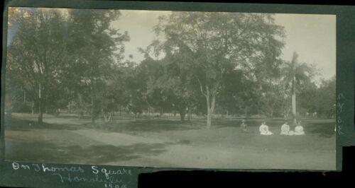1908 Family at Thomas Square Park Honolulu Hawaii 3 x 7 Photo