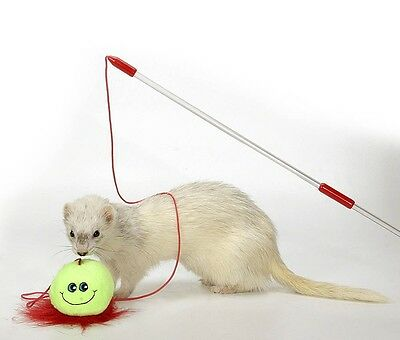 Marshall Pet Products Ferret Teaser Toy Free Shipping