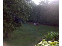 Antique lawnmower