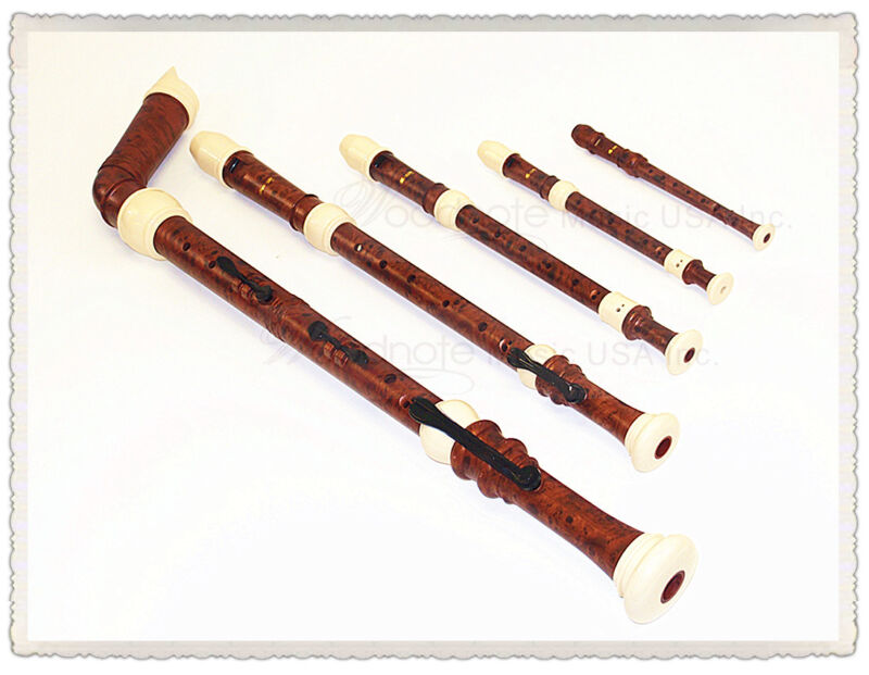Beauiful Twin Wood Simulated( knob gold / Ivory ) Recorder Set