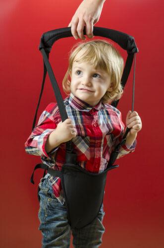 Walking Harnesses