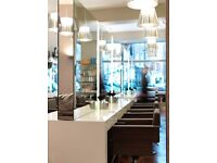 Hairdressing Apprentice / Junior / Salon Assistant / Trainee Hairdresser