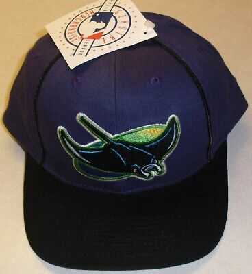 online store 66f4d 6617b Tampa Bay Devil Rays Vintage 90s Adjustable Strapback hat (NEW WITH TAGS!!)  MLB
