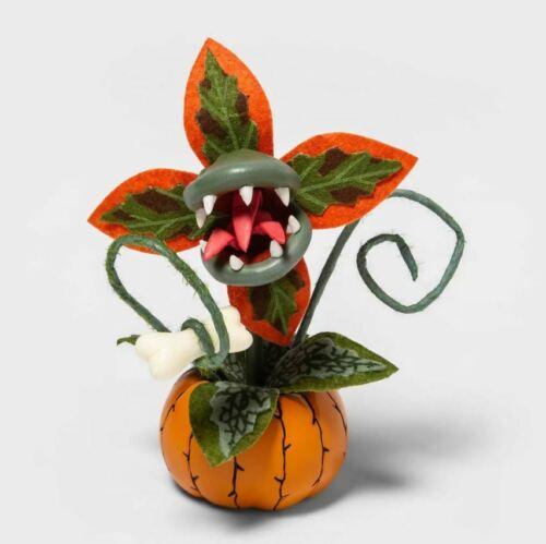 Halloween Creepy Decorative Orange Faux Succulent Plant 2020 Hyde & Eek Target