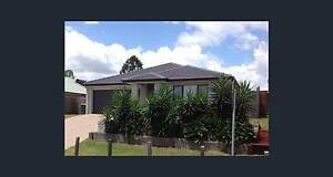 4 bedroom, 2 bathroom, 2 lounge room house Wakerley Brisbane South East Preview