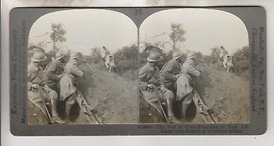WWI KEYSTONE STEREOVIEW - DOG REPORTING TO FIRST AID SQUAD WITH SOLDIER HELMET