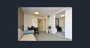 1 bed room + study + include gas $ 450pw, St Kilda Road Melbourne Melbourne CBD Melbourne City Preview